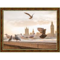 """""""Лондонские птицы"""""""