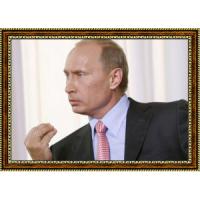 Путин Владимир (17)