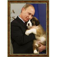 Путин Владимир (8)