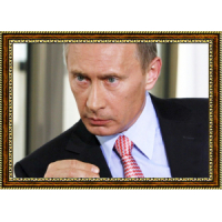 Путин Владимир (53)