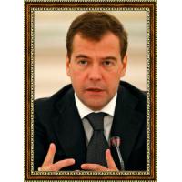 Медведев Дмитрий (5)
