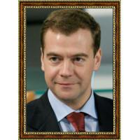 Медведев Дмитрий (6)