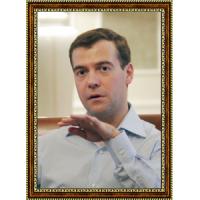 Медведев Дмитрий (10)