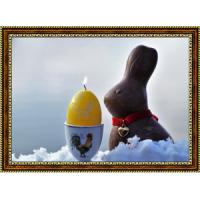Пасхальные кролики (16)